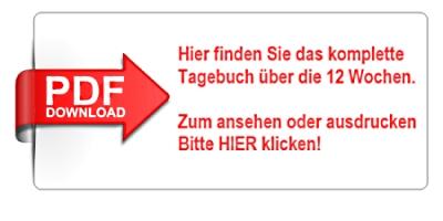 pdf-tagebuch-klein